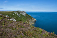 United Kingdom, England, Devon, Island of Lundy, Bristol channel, coastline - RUNF00827