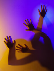 Silhouette of hands - WWF04745