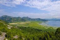Montenegro, Lake Skadar near Virpazar - SIEF08295