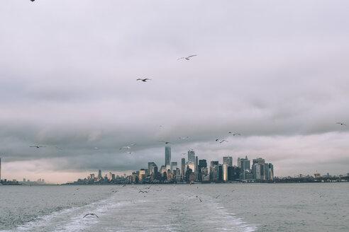 USA, New York, Panorama of Manhattan skyline, birds fly - OCMF00194