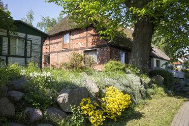 Fachwerkhaus in Breege, Rügen, Ostseeinsel Rügen, Ostsee, Mecklenburg-Vorpommern, Deutschland - MAMF00317