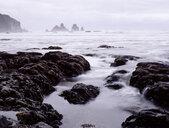 New Zealand, coast at Westport - WWF04767