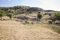 Greece, Peloponnese, Arcadia, Lykaion, antique excavation site below mountain Profitis Ilias - MAMF00321