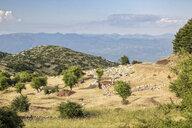 Greece, Peloponnese, Arcadia, Lykaion, antique excavation site below mountain Profitis Ilias - MAMF00324