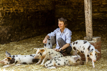 Smiling senior woman sitting in barn with Gloucester Old Spot pigs. - MINF09837