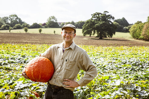 Smiling farmer standing in a field, holding large red pumpkin. - MINF09855