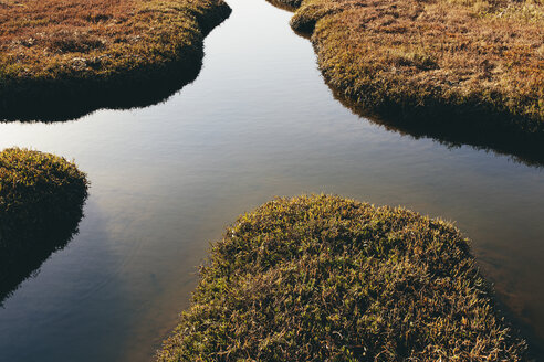 Intertidal wetlands and water channels, overhead view at sunset, reflected light in the water. - MINF10047