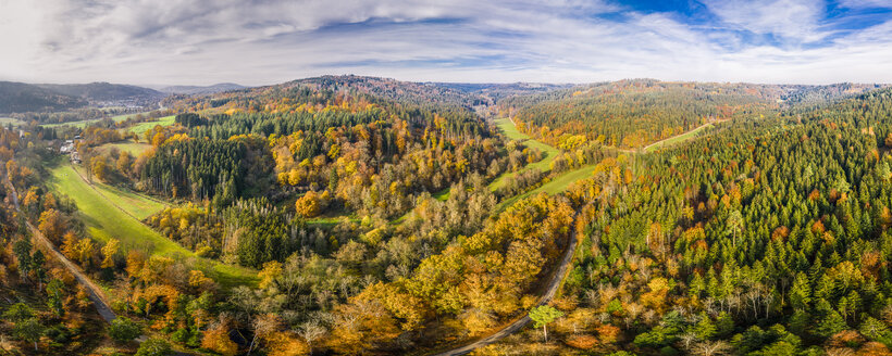Germany, Baden-Wuerttemberg, Swabian Franconian forest, Aerial view of forest in autumn - STSF01818