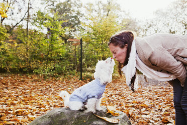 Woman making face in front on Bichon Frise in forest - ASTF01345