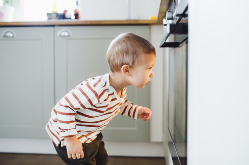 Toddler boy looking at oven in kitchen at home - HAPF02833