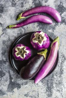 Various sorts of aubergines - SARF04044