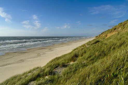 Denmark, Jutland, Lokken, dune landscape and North Sea - UMF00882