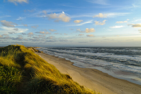Denmark, Jutland, Lokken, dune landscape and North Sea - UMF00885