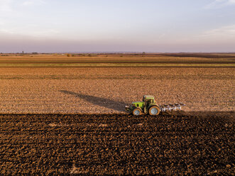 Serbia, Vojvodina. Tractor plowing field in the evening - NOF00071