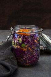 selbstgemachtes Rotkraut (fermentiert) mit Chili, Karotten und Koriander - LVF07658