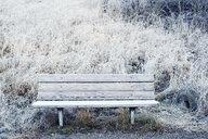 Wooden bench in snow in Sweden - FOLF09656