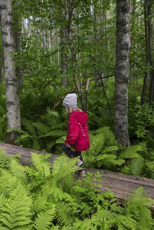 Finland, Kuopio, girl walking in a birch forest - PSIF00205