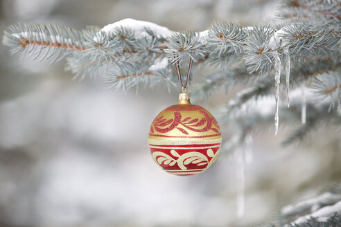 Christmas ornament hanging on tree with icicles - HEROF04633