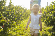 Portrait of little girl picking berries with her mother in summer - DIGF05594