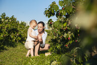 Mother and little daughter picking raspberries together in summer - DIGF05609