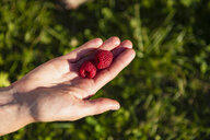 Two raspberries on woman's hand - DIGF05612