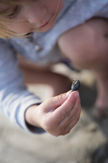 Little girl examining a seashell on the beach - PSIF00220