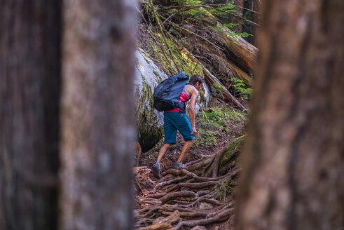 Rock climber walking through forest, Squamish, Canada - CUF46932