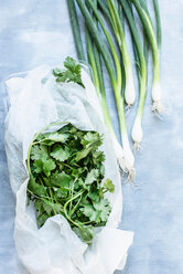 Fresh coriander wrapped in paper towel and green onions - CUF46986