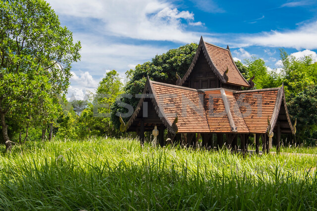 Shrine in countryside, Chiang Mai, Thailand - CUF47067