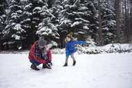 Father and little son having a snowball fight in winter forest - ABIF01144