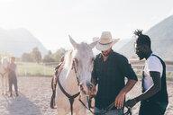 Cowboy handing horse's reins to young man in rural equestrian arena, Primaluna, Trentino-Alto Adige, Italy - CUF47502
