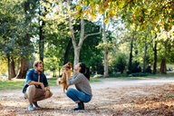 Couple with pet dog in park - CUF47601
