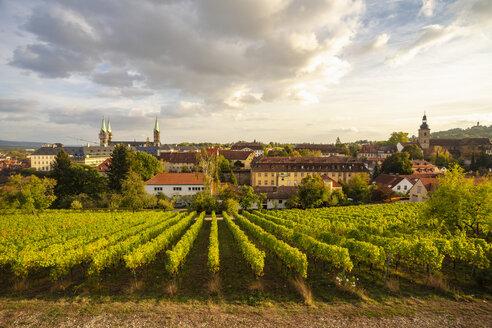 Bamberger altstadt, UNESCO Weltkulturerbe - TAMF01134