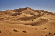 Morocco, desert dunes - EPF00549