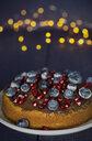 veganer Kuchen mit Heidelbeeren und Granatapfelkernen, außerdem Schokoladenüberzug - JESF00204