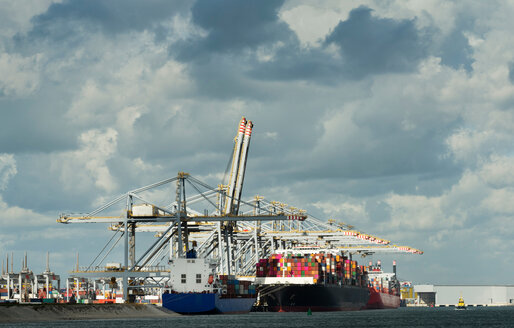 Container terminal situated on the newest part of Rotterdam harbour, Netherlands - CUF47912