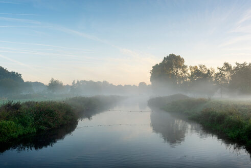 River Mark in early morning mist, Netherlands - CUF47927