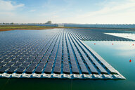 Floating solar panels installed on water supply of neighbouring greenhouses, elevated view, Netherlands - CUF47942