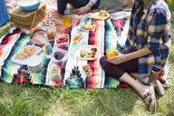 Couple enjoying picnic on blanket - HEROF05433
