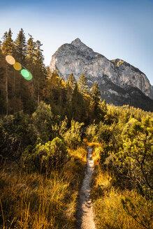 Hiking trail, Karwendel region, Hinterriss, Tirol, Austria - CUF48307