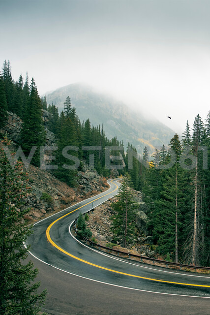 Winding road through forest, Aspen, Colorado, USA - ISF20160