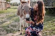 Woman feeding donkey - ISF20232
