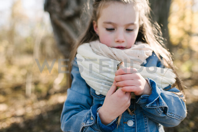 Little girl holding frog in forest - ISF20316