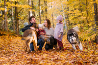 Family of four and dogs in forest - ISF20391