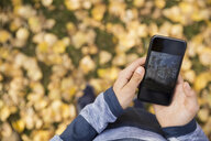 Overhead view boy viewing autumn leaves photograph on camera phone - HEROF05568