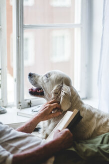 Midsection of senior man stroking dog while holding book on bed at home - MASF10947