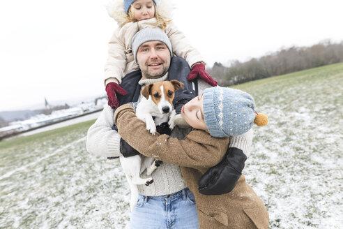 Wickede, NRW, Deutschland. Ein Vater spielt  mit den Kindern und einem Jack Russell Terrier Hund  mit Schnee im Winter im Freien - KMKF00695