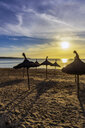 Spain, Mallorca, El Arenal, beach at sunrise - THAF02415