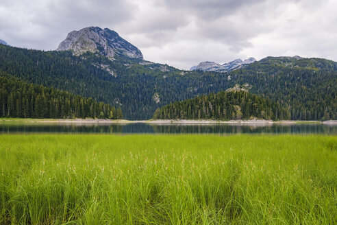 Montenegro, Zabljak province, Durmitor National Park, Black Lake - SIEF08343