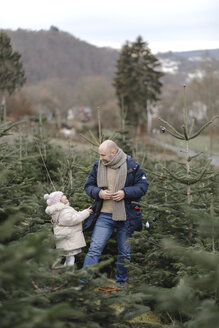 Father and daughter decorating Christmas tree on a plantation - KMKF00727